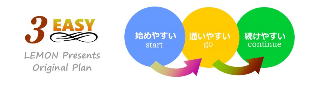 レモンプラン~3つのEASY~